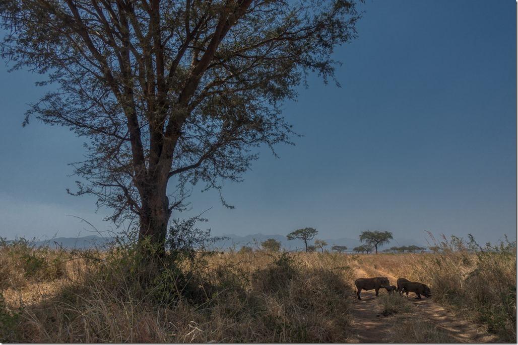 uganda-03-33