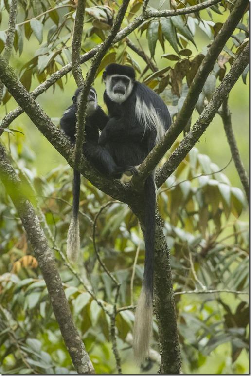 uganda-05-12